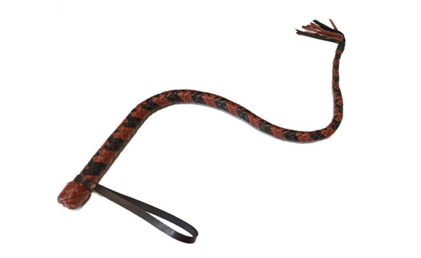 Плеть Сетчатая Змея